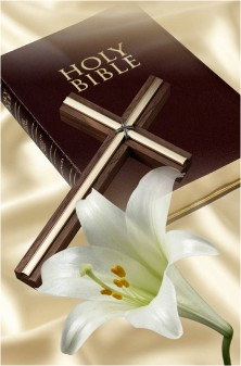 Bible and Flower